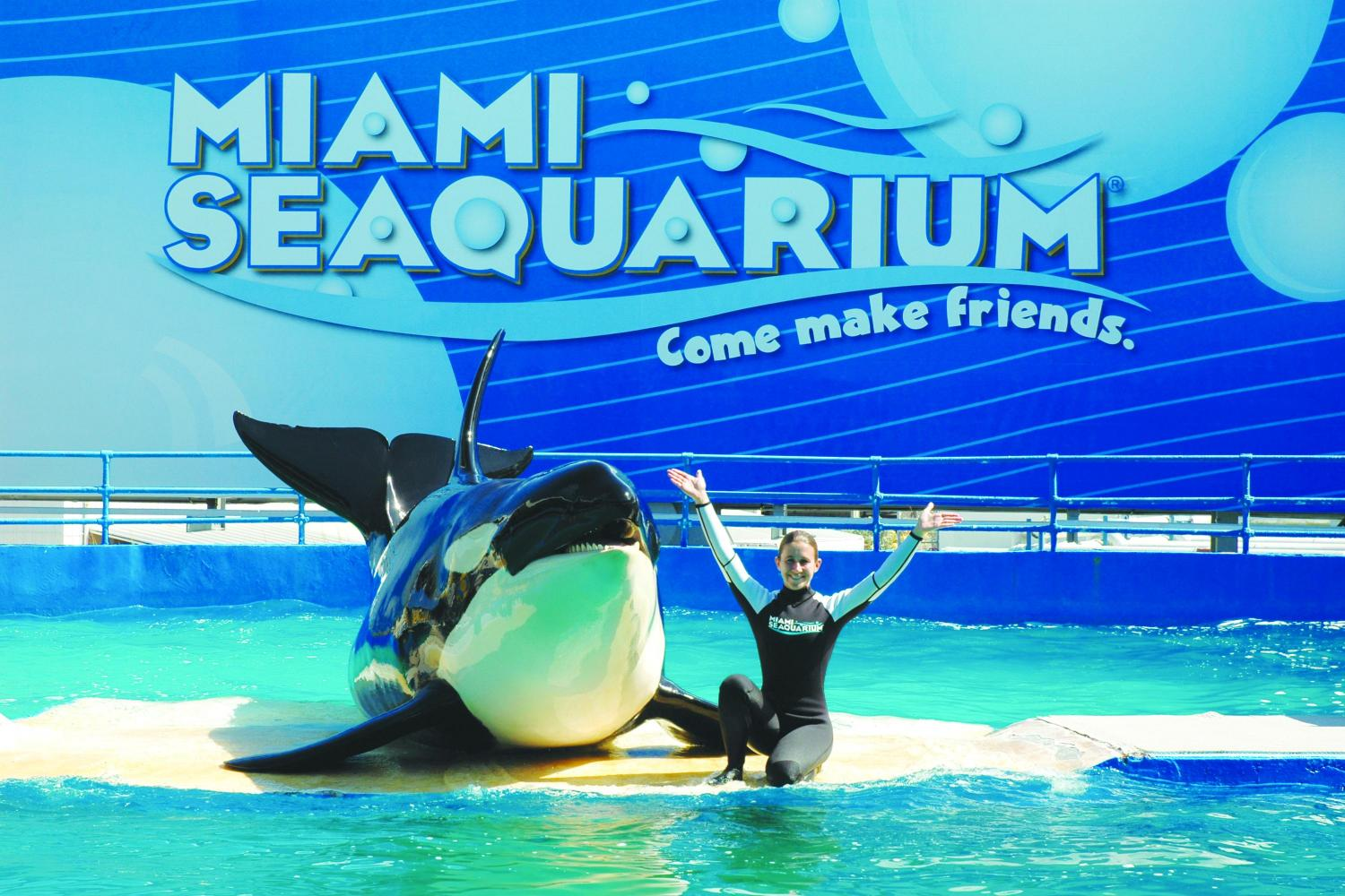 miami-sea-aquarium.jpg